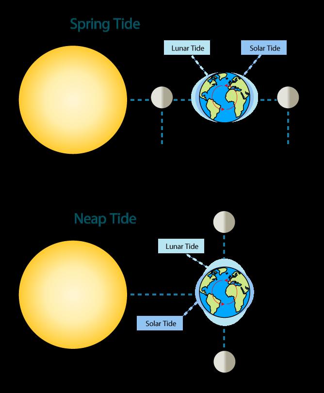moon-tides